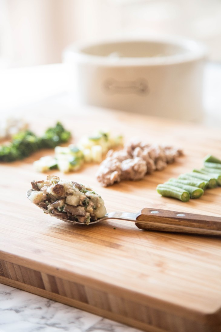 NomNomNow Healthy, Freshly Cooked Meals for Dogs, Delivered : Porkalicious Potluck Recipe