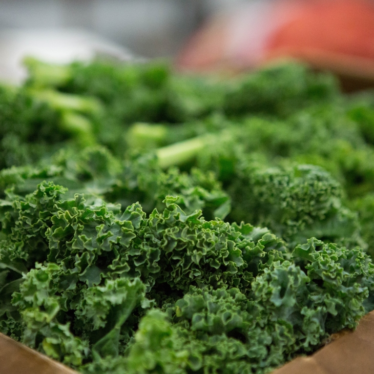 Kale for dogs l NomNomNow Porkalicious Potluck