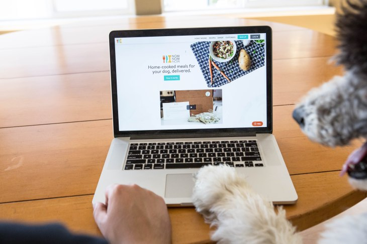 NomNomNow fresh meals for dogs delivery How we use technology to feed your dogs