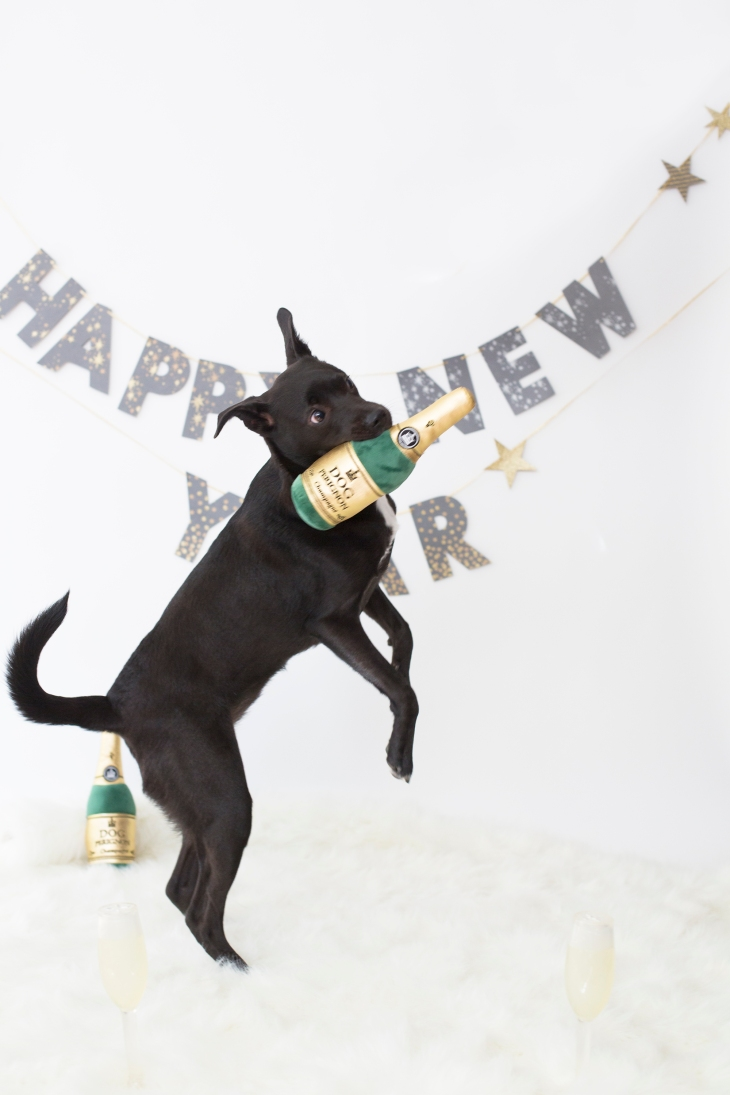 Happy New Year! New Year's Resolutions l NomNomNow blog