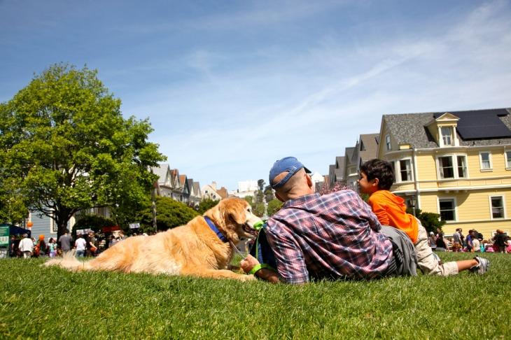 Best Dog Parks in San Francisco: Duboce Park l NomNomNow Blog
