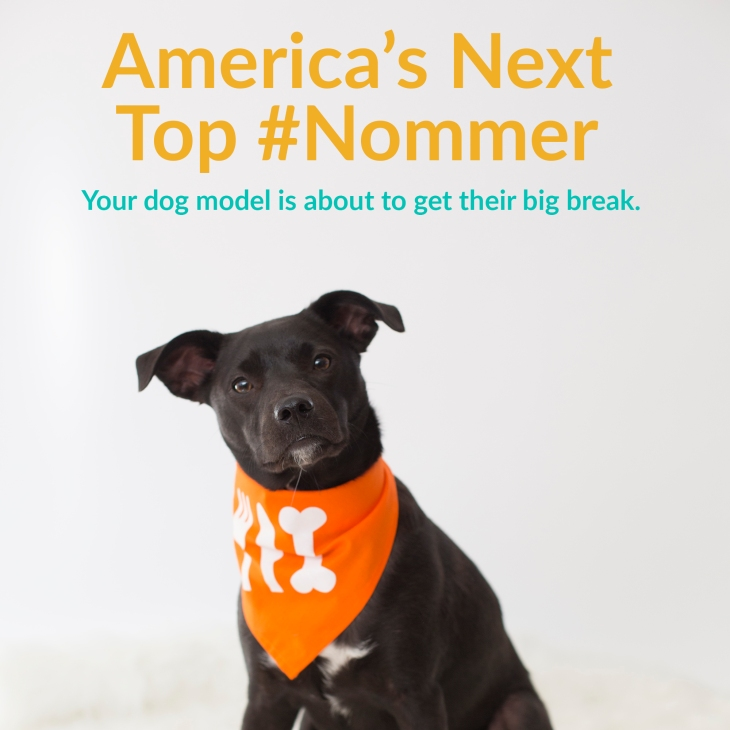 America's Next Top #Nommer l NomNomNow Blog