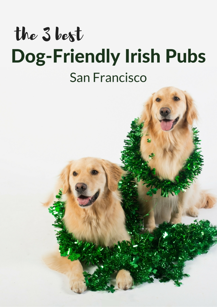 Dog-friendly bars & dog-friendly restaurants in San Francisco, St. Patrick's Day l NomNomNow Blog