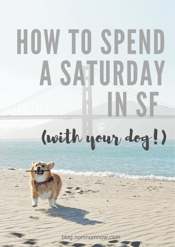 Dog Friendly SF: How to Spend a Saturday in SF l NomNomNow Blog
