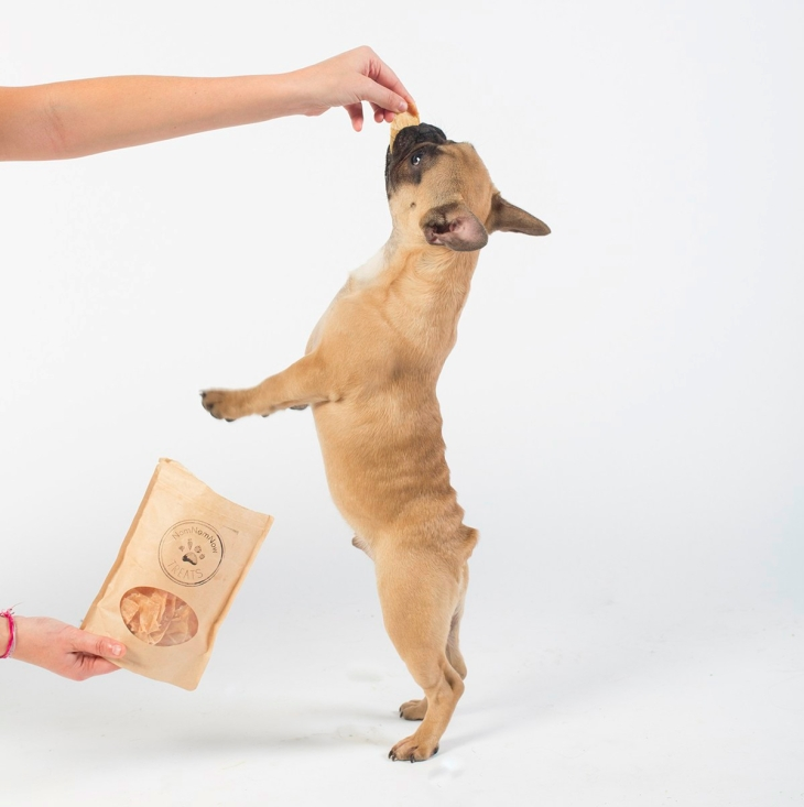 How to Teach Dog Tricks l NomNomNow Blog