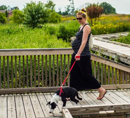 Pregnant with dog, Dog Moms on Mother's Day l NomNomNow Blog